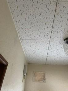 ジプトン天井