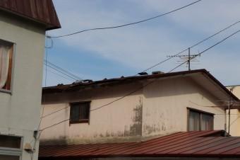 屋根トタン剥がれ
